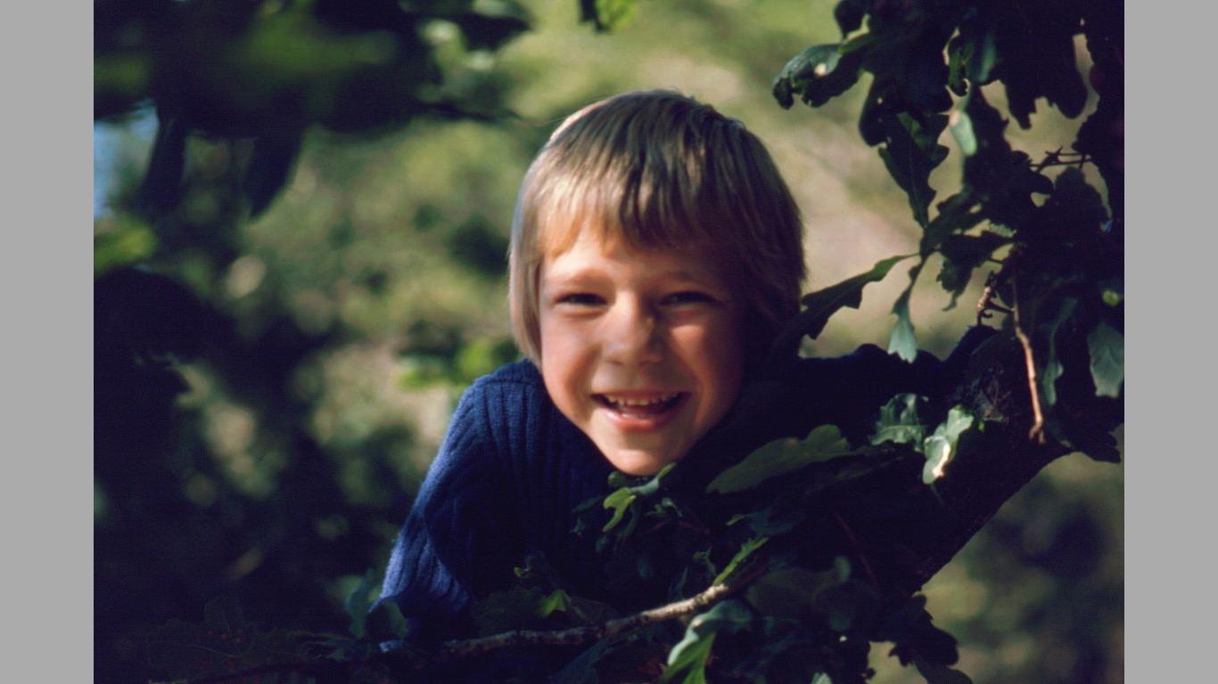 Heine 1977