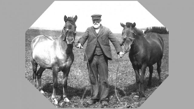 Soeren Oestergaard med heste