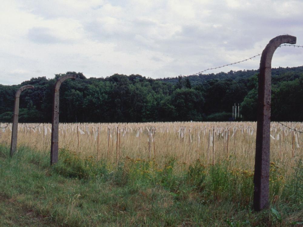 KZ-lejren Langenstein - hver pind markerer et menneske, der døde her