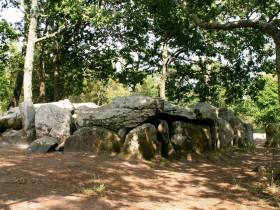 2005-F487 Dysser ved Carnac