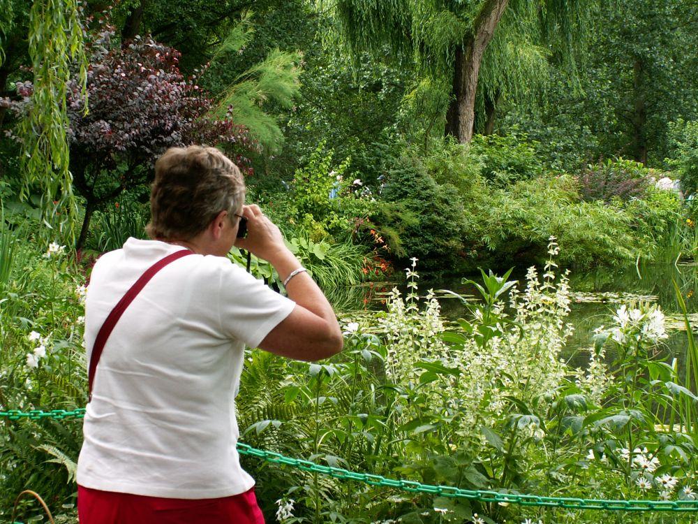 Aase i Monets have