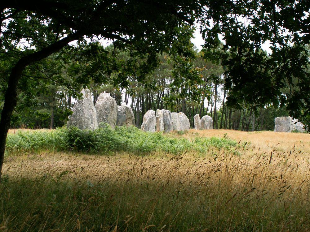 Stenrækker ved Carnac