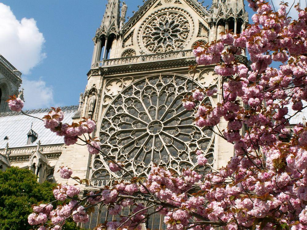 Notre Dame sydrosen udefra