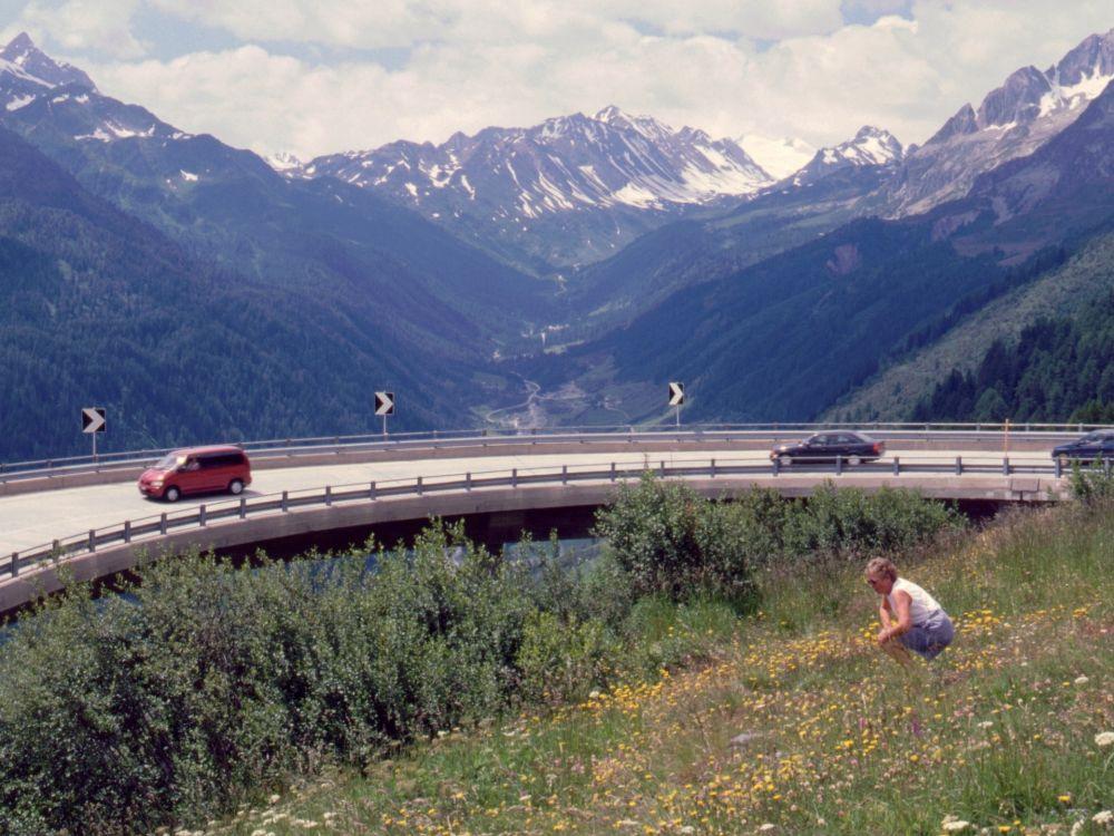 Aase ved vejen over St. Gotthard