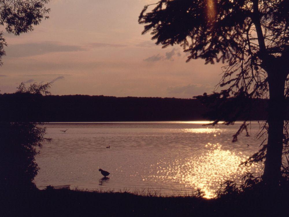 Solnedgang fra campingpladsen i Ratzeburg