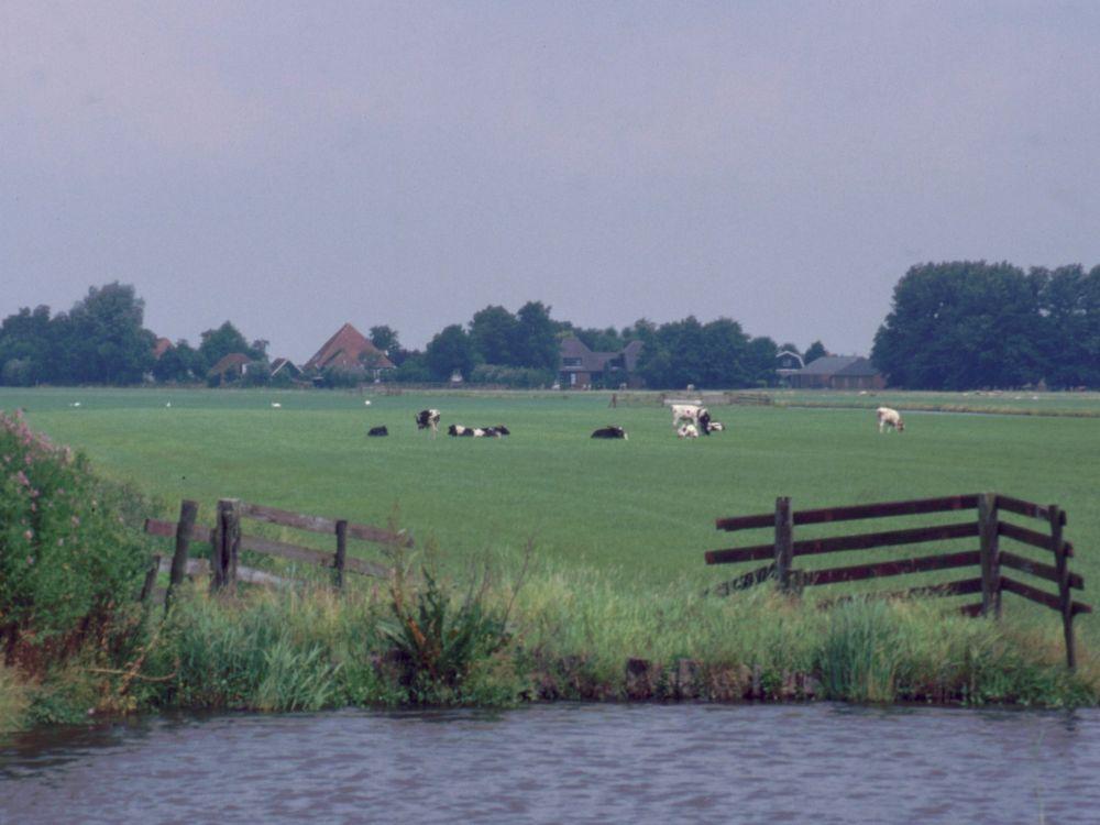 Marsklandskab i Holland