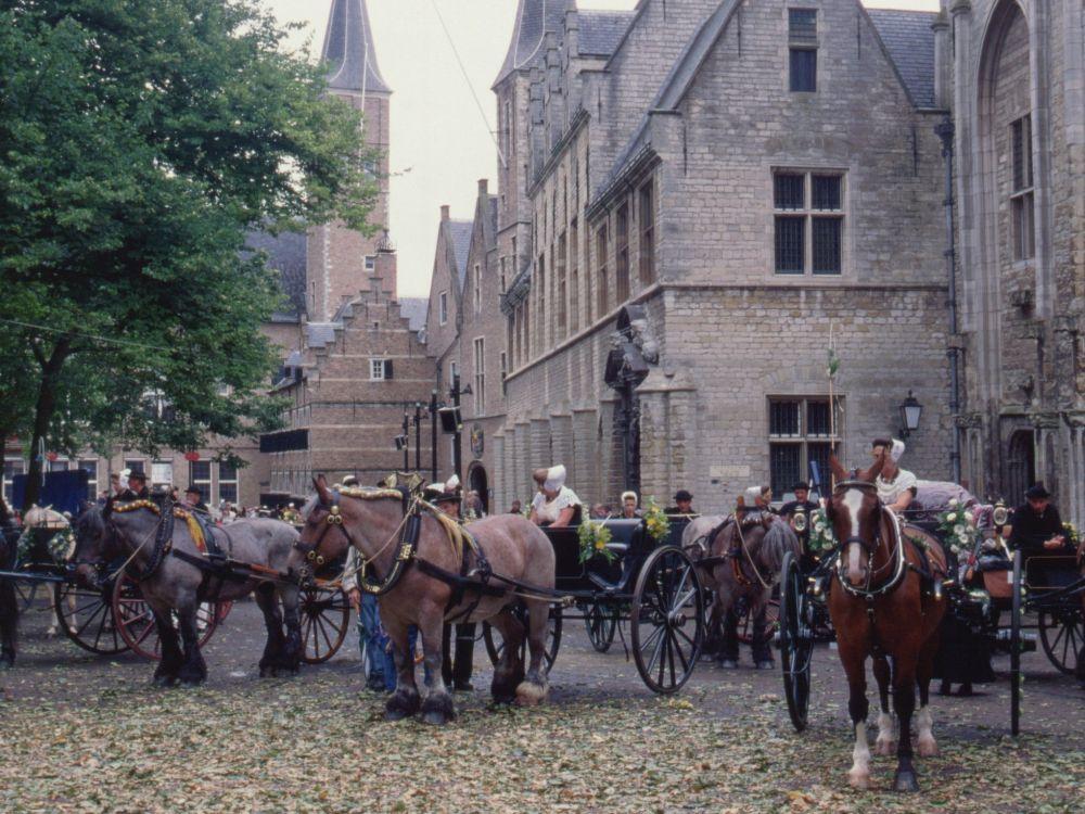 Middelburg opstilling til ringridning