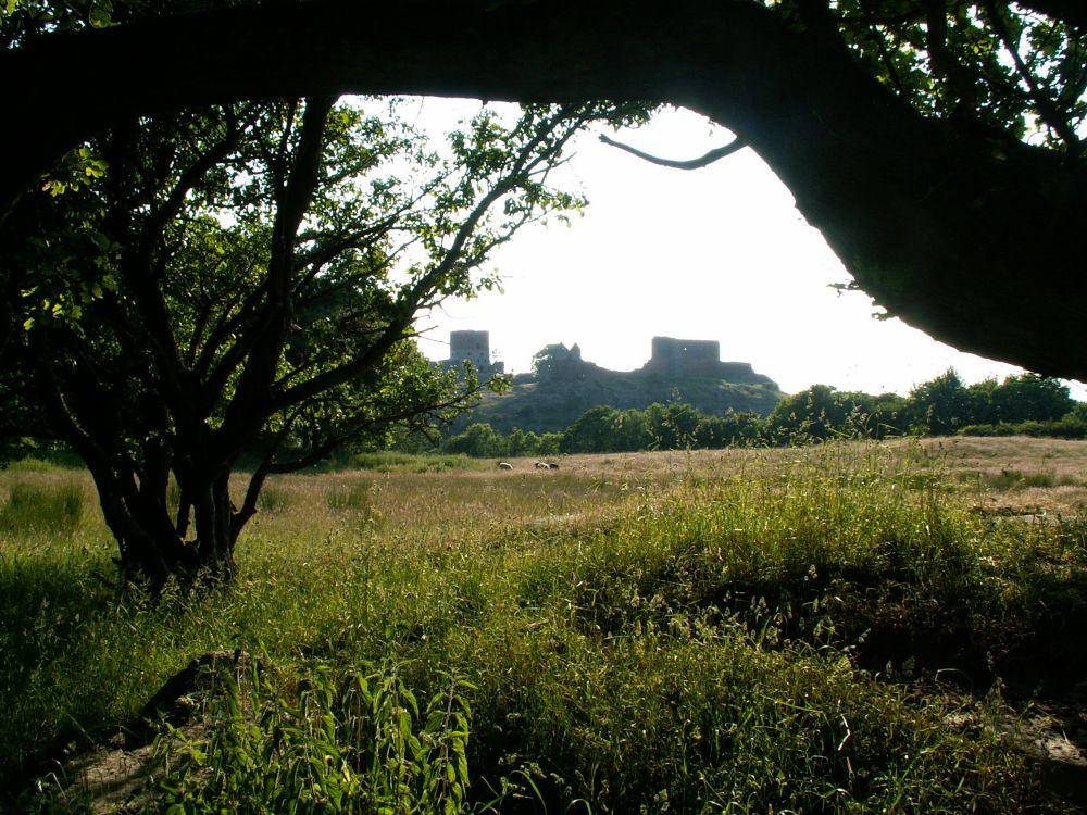 Hammershus slotsruin i sen eftermiddagslys