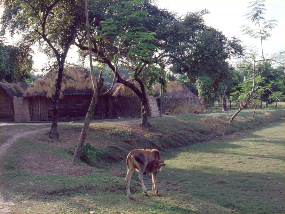 Landsby i Bangladesh