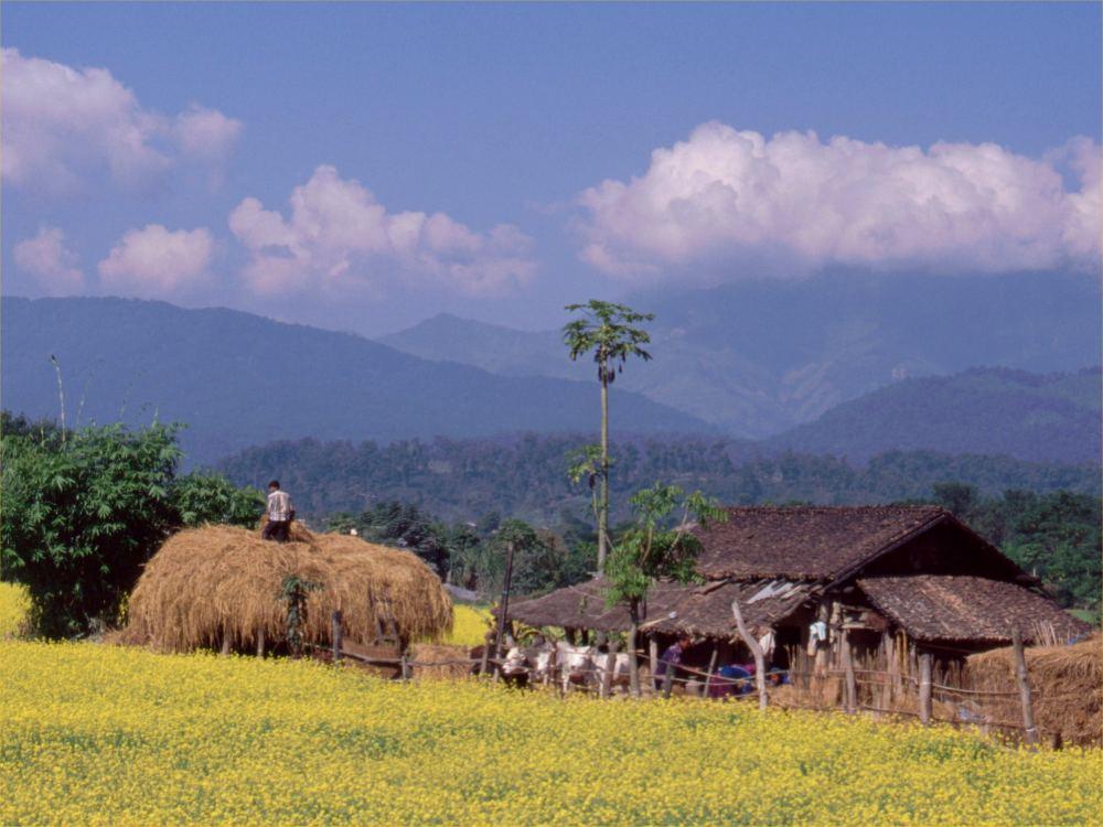 Gård i Syd-Nepal