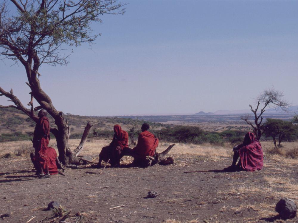 Massaier på sletten