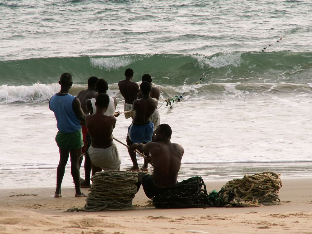 Fiskeri fra kysten