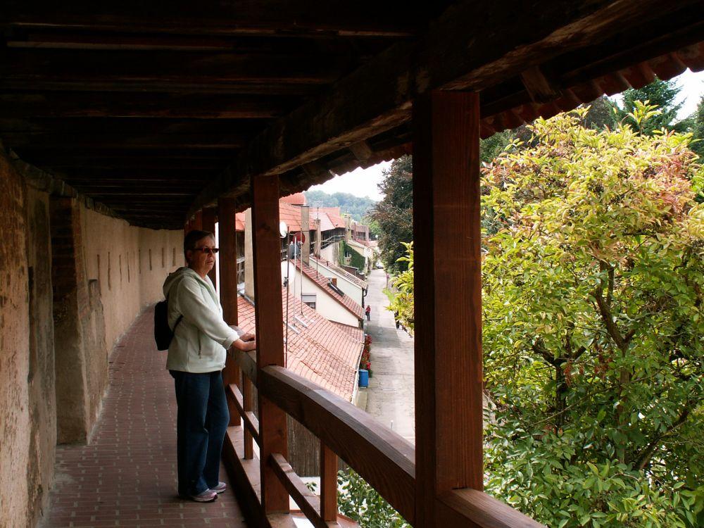 Aase på bymuren i Nörlingen