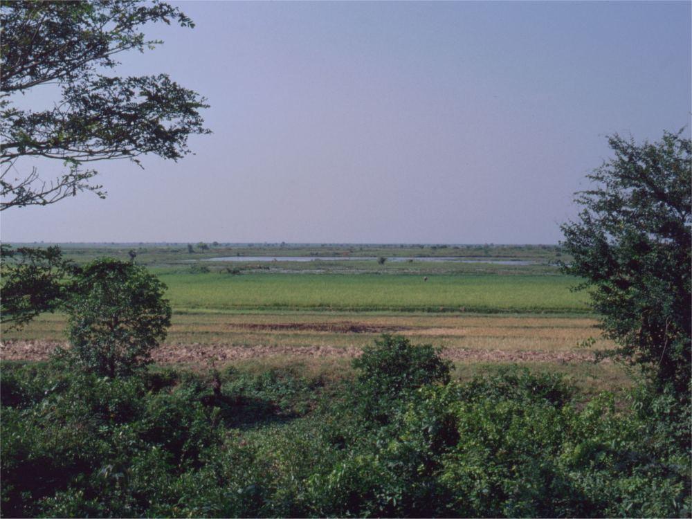Cambodjansk landskab
