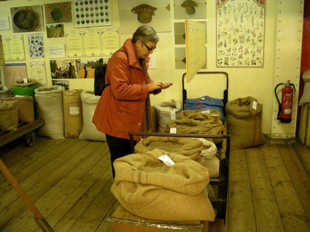 Aase i et krydderimuseum