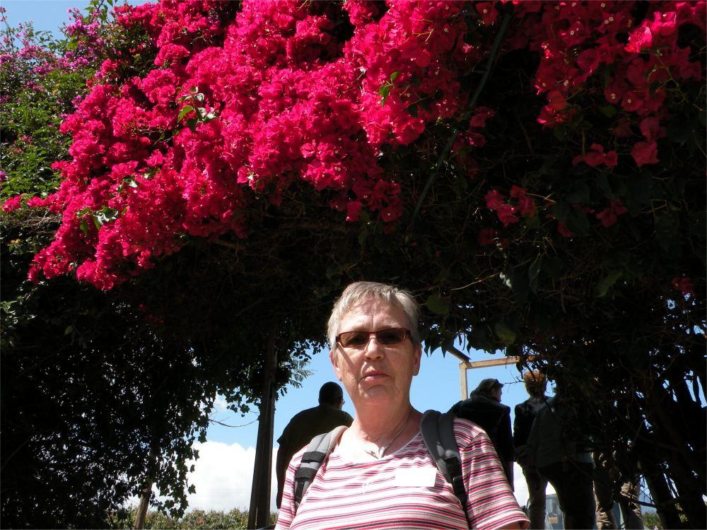 Aase ved blomster i Kapernaum