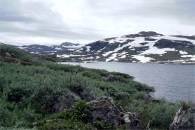 10929 Aurlandsvejen