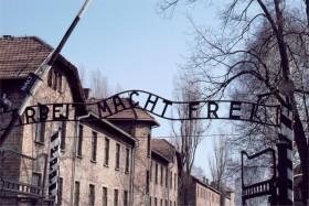 11211 Auschwitz NY