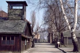 11224 Auschwitz