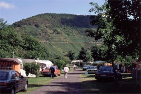 11361 Camping i Mayschoss - Ahrdalen