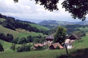 11389 Schwartzwald-udsigt