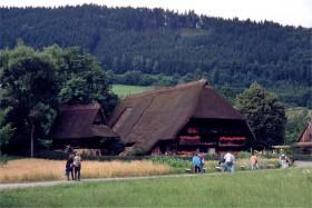 11403 Frilandsmuseum i Gutach