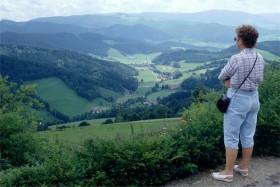 11465 Schwarzwald-udsigter omkring Sct Peter