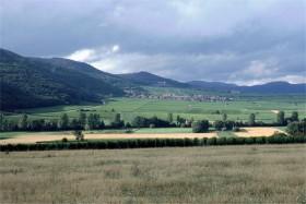 11481 Rheinpfalz-landskab