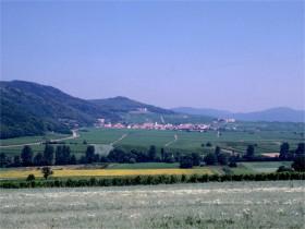 12208 Rheinpfalz