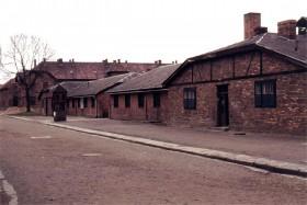 12715 Auschwitz