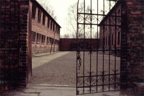 12728 Auschwitz