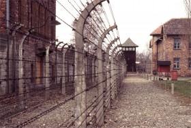 12732 Auschwitz