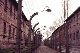 12733 Auschwitz