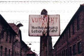 12734 Auschwitz