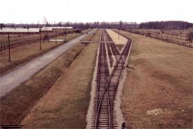 12738 Birkenau