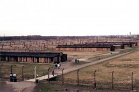 12739 Birkenau