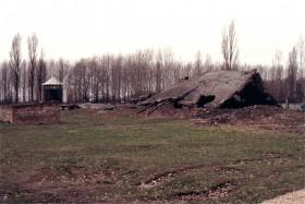 12747 Birkenau