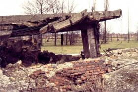 12749 Birkenau