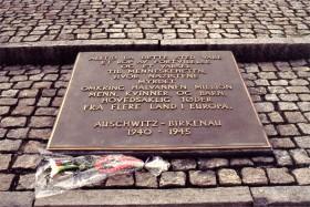 12751 Birkenau