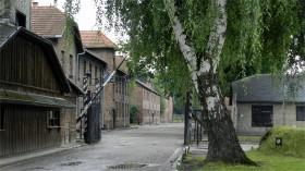 2015-02 POL Auschwitz indgangsport