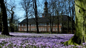 2015-0280 Husum Slotspark krokus