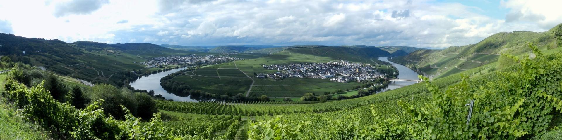 2015 Mosel 56 Trittenheim