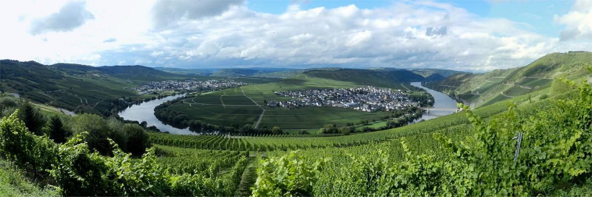 Trittenheim Mosel