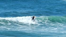 2016 FR 0042 Surfere ved sydkysten
