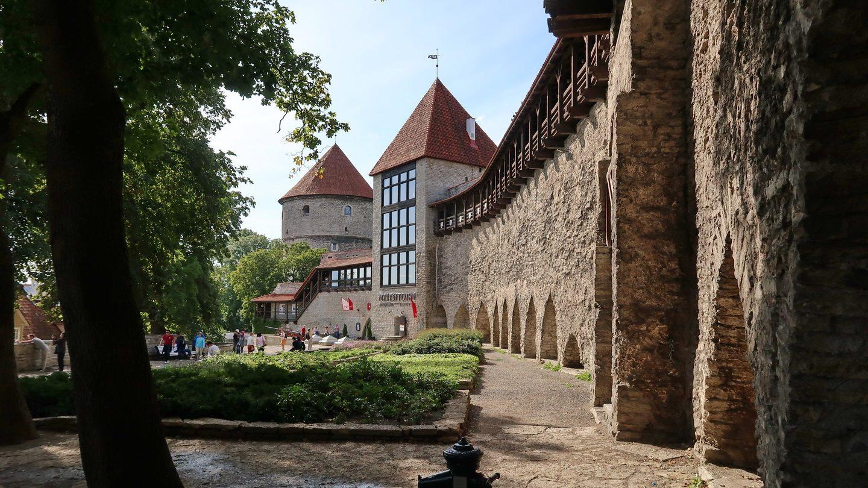 Den danske konges have ved den gamle bymur