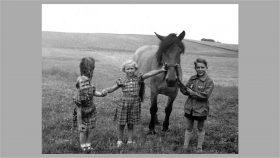 """Ellen, Ruth og Thorkild med hesten """"Lotte"""" ca. 1953."""