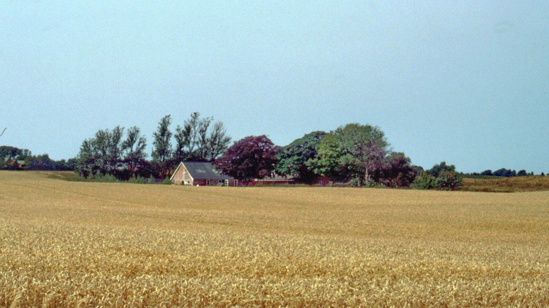 Dalgården i 2003 fra sydøst.