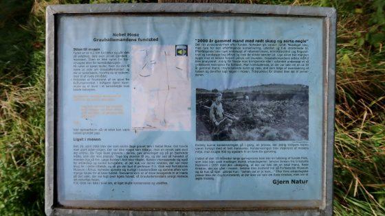 Skilt ved Grauballemandens findested i Nebelgårds mose.